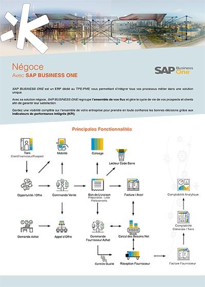 Logiciel négoce SAP Business One
