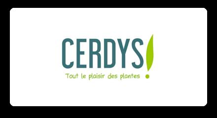 Logo Cerdys